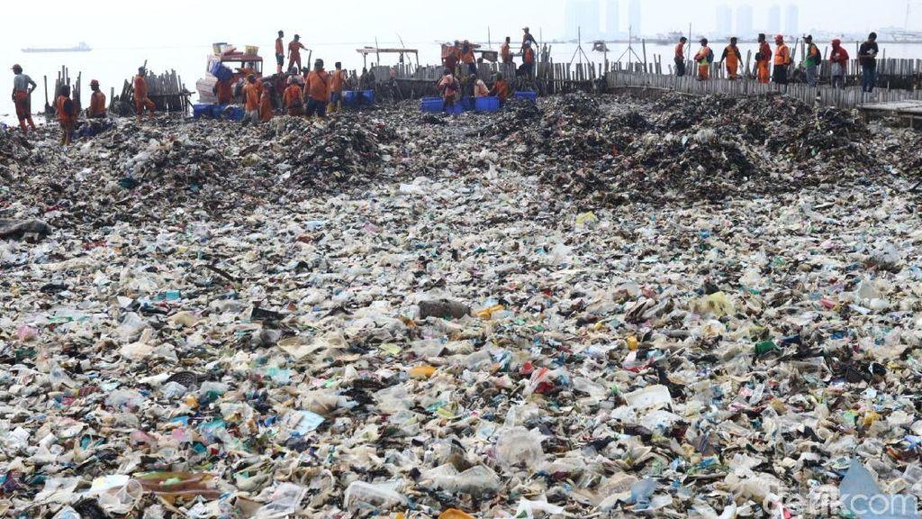 Memandang dari Langit Lautan Sampah di Teluk Jakarta