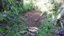 Hilang 18 Tahun, Pria di Aceh Ditemukan Sudah Jadi Kerangka