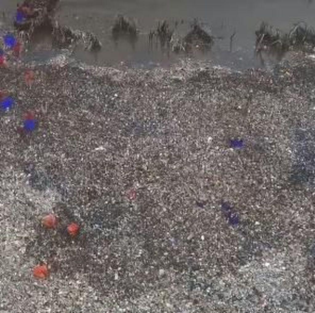 Hasil 2 Hari Pengerukan Lautan Sampah di Teluk Jakarta