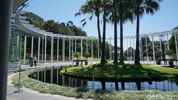 Salah satu sudut The Royal Botanical Garden