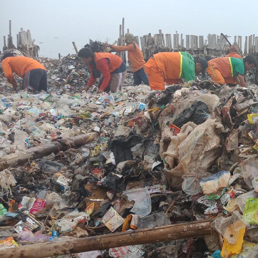 Video Pasukan Oranye Bersihkan Sampah di Teluk Jakarta