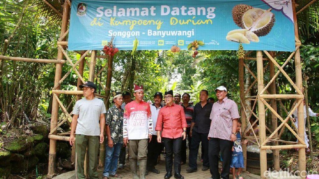 Traveler Pecinta Durian Wajib Liburan ke Banyuwangi! Ini Alasannya