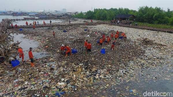 Cegah Sampah, Kawasan Mangrove Teluk Jakarta akan Dipagari Jaring