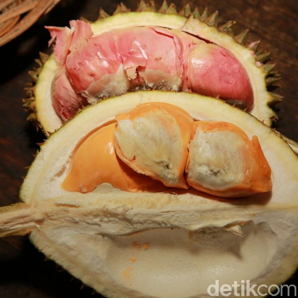 Kamu yang Suka Durian Harus ke Sini, Nggak Nyesel!