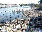 Foto: Pantai Marunda yang Penuh Sampah