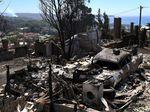 Parahnya Kebakaran Hutan di Australia
