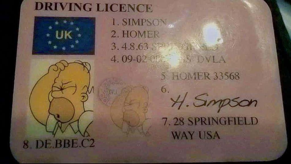 Ditilang, Pengendara Ini Malah Tunjukkan SIM The Simpsons
