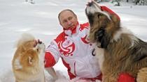 Menang Pilpres Lagi, Ini Hal yang Belum Diketahui Soal Putin