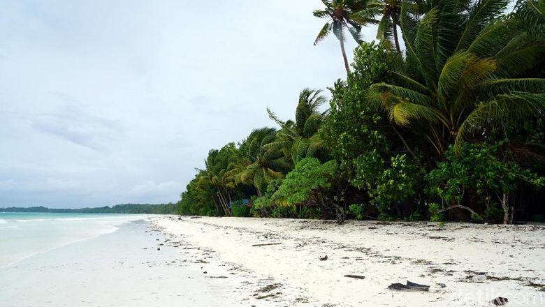 Foto:  Pantai Ngurbloat, pantai berpasir put   ih di Kepulauan Kei (Wahyu/detikTravel)
