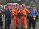 Bikin Kaget! Ular Sanca 4 Meter Acak-acak RM Padang di Jakbar