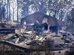 Foto: Dipicu Petir, Begini Parahnya Kebakaran Hutan Australia