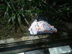 Kejam, Orok Bayi Dibuang Dipinggir Jalan di Yogya