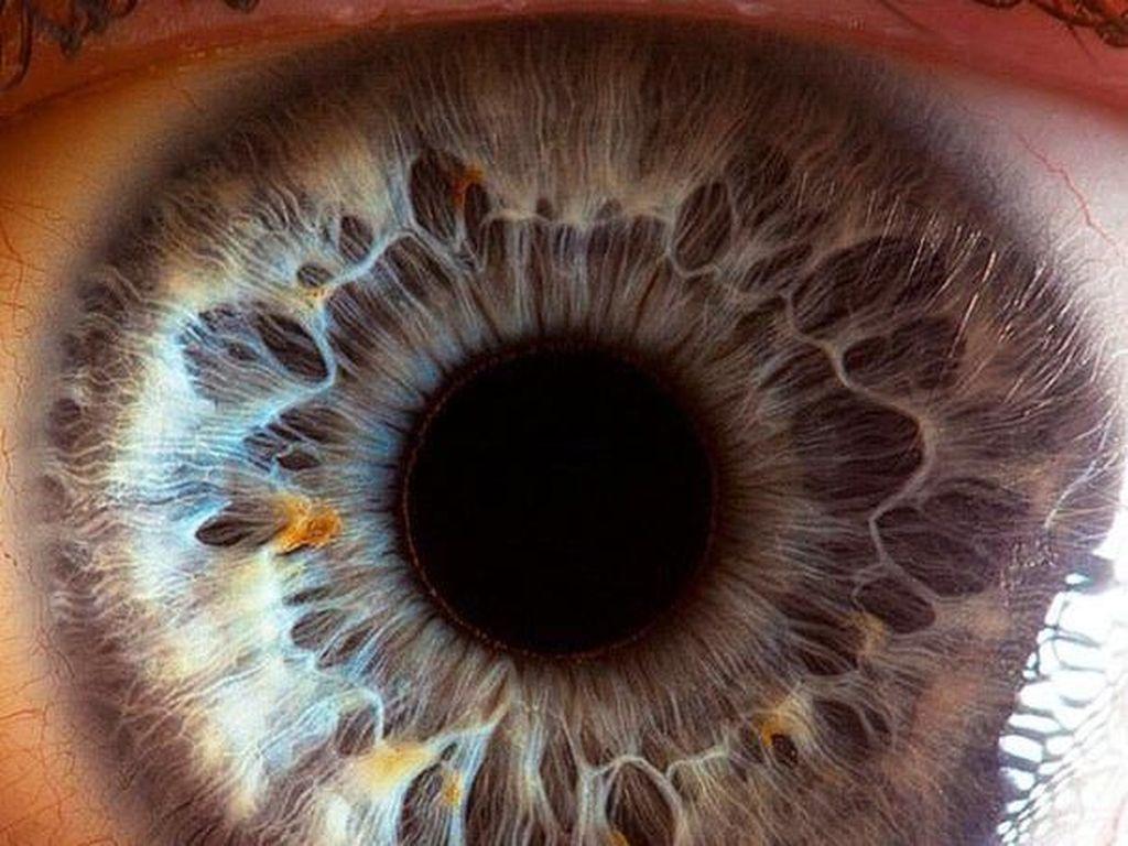 Mata Manusia dari Jarak Super Dekat, Keren atau Seram?