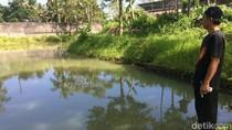 Foto: Kolam & Makam Penuh Berkah di Ciamis