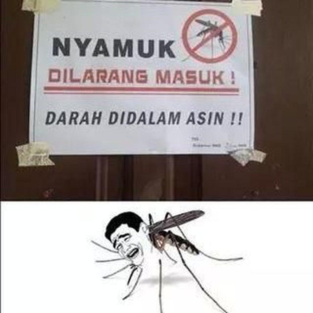 10 Meme yang Gambarkan Seberapa Ngeselinnya Nyamuk