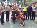 Vespa Dimodif Jadi Pohon, Warga Jember Ditilang Polisi