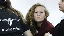 ABG Palestina yang Tampar Tentara Israel Dihukum 8 Bulan Bui