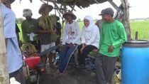 Dicurhati Petani Jombang, Khofifah Langsung Telepon Mentan