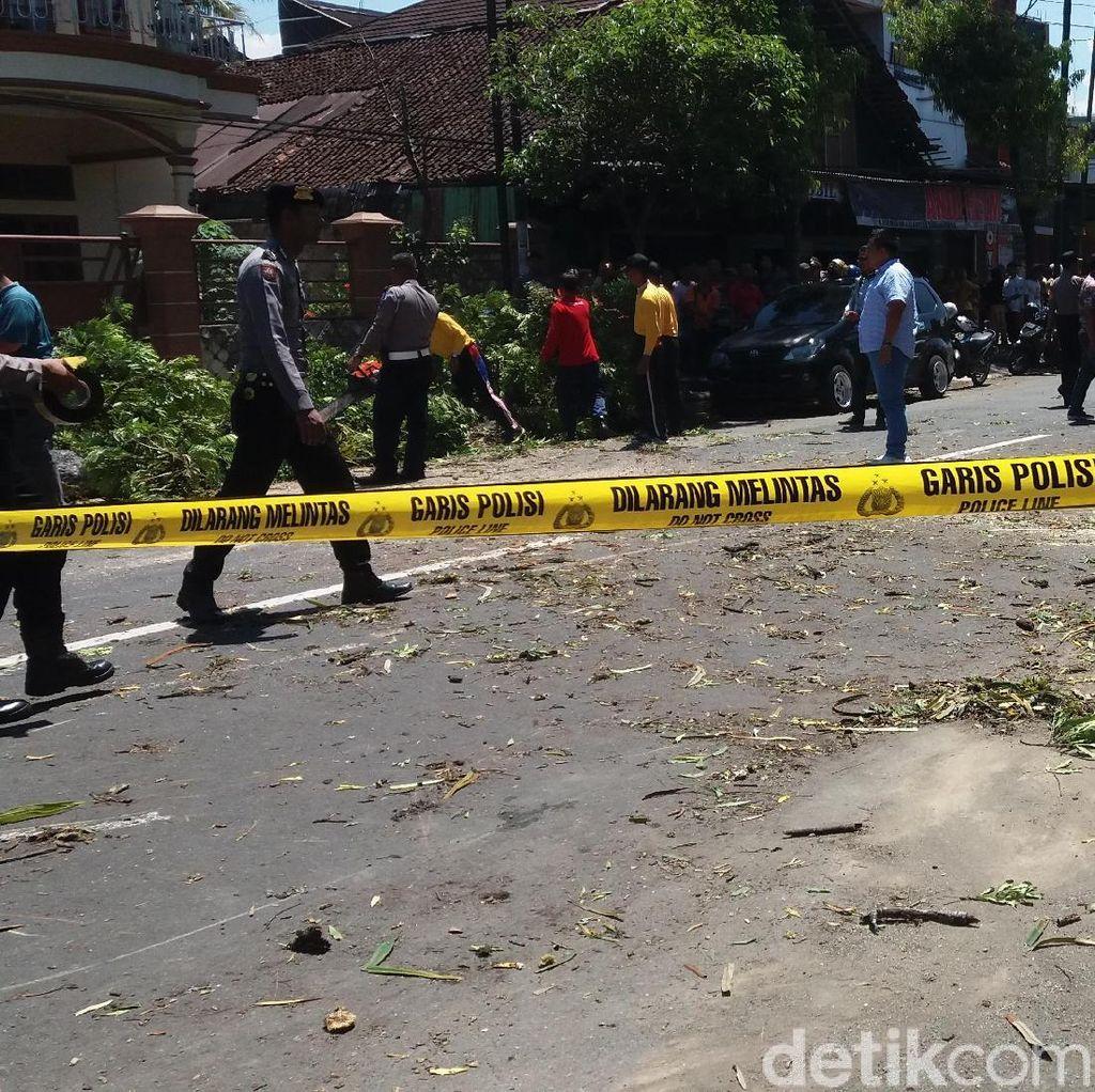 2 Pemotor Meninggal Tertimpa Pohon Peneduh Jalan di Banjarnegara