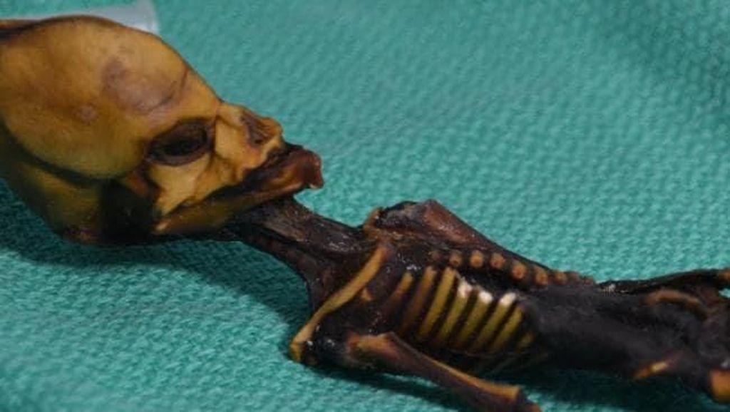Fakta Mengejutkan Soal Mumi 'Alien' Misterius di Chile