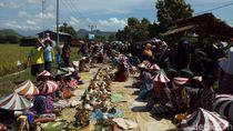 Metik, Cara Warga Ponorogo Bersyukur Jelang Panen Padi
