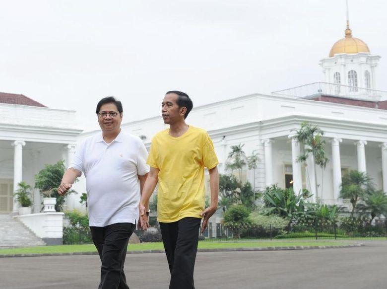 Dewan Pakar Golkar Usulkan Airlangga Cawapres Jokowi
