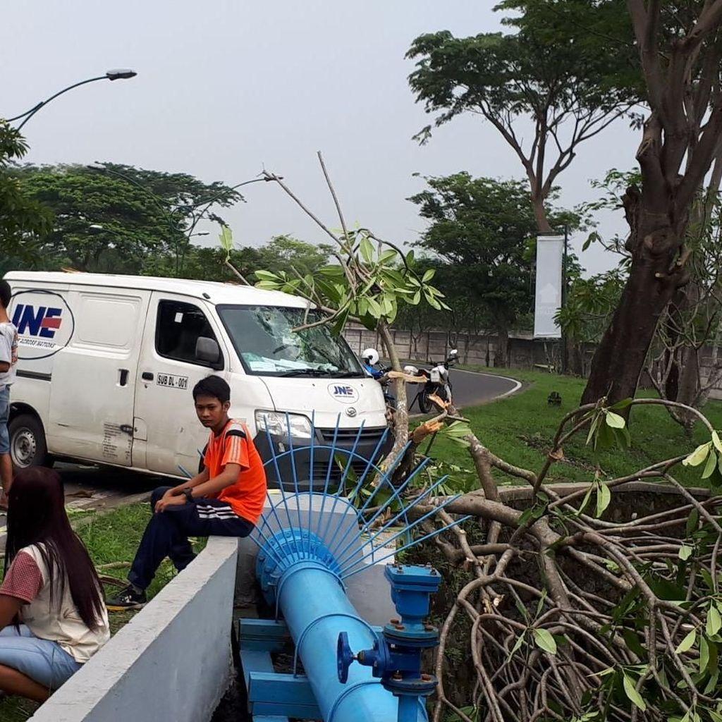 Mobil Ini Tabrak Pohon Kamboja Setelah Hindari Bayangan Menyeberang