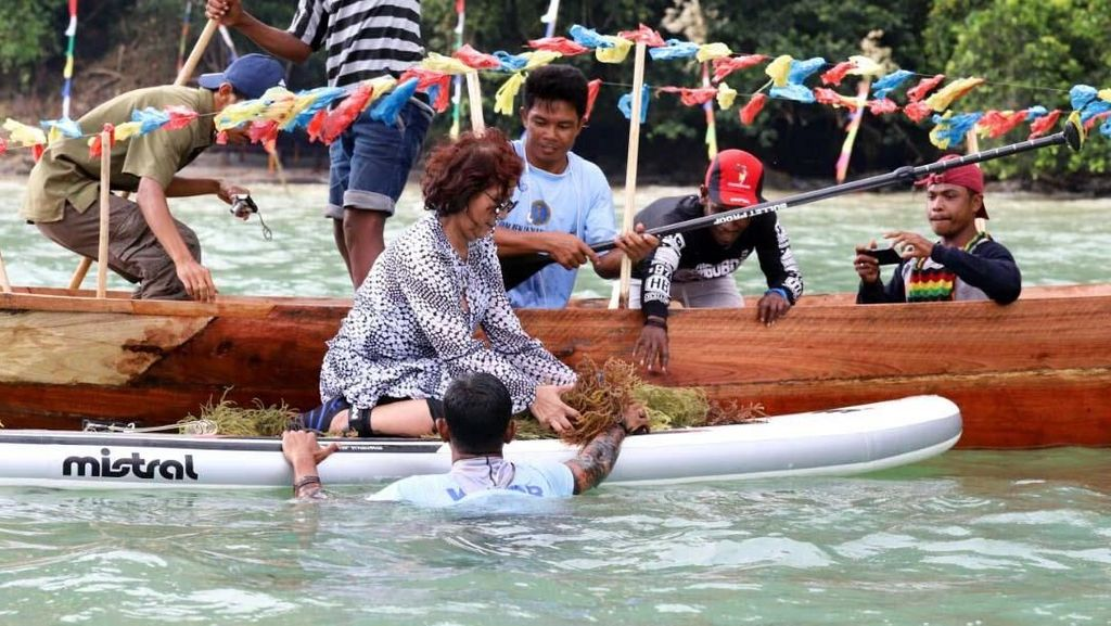 Ke Papua, Menteri Susi Tinjau Program dan Panen Rumput Laut