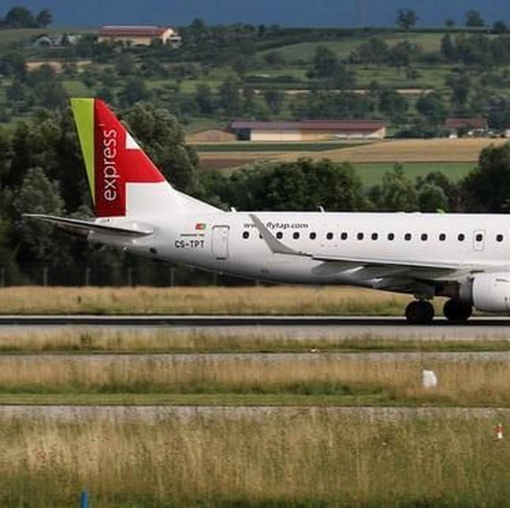 Pilot Mabuk di Kokpit, Ratusan Penumpang Terlantar di Bandara