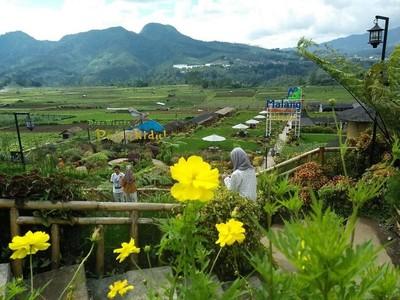Ide Liburan Long Weekend dari Jokowi: Desa Pujon Kidul Malang