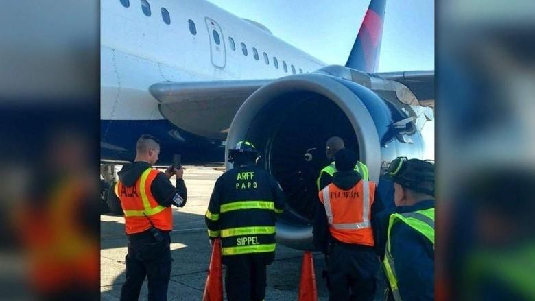 Pesawat Delta ditabrak burung (Port Authority Police Department)