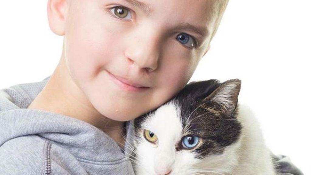 Alasan Mengharukan Seorang Ibu Mengadopsi Seekor Kucing