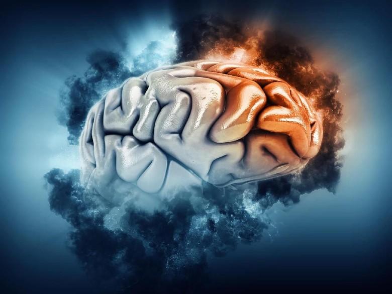 Mengalami 4 Ciri-ciri Ini, Bisa Jadi Anda Terkena Tumor Otak