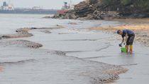 Pipa Minyak Terbakar, Pantai Banua Patra Balikpapan Tercemar