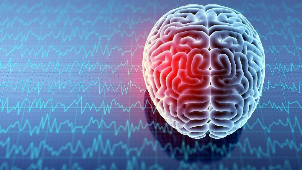 Umur Bertambah, Apakah Otak Kita Juga Ikut Menua?
