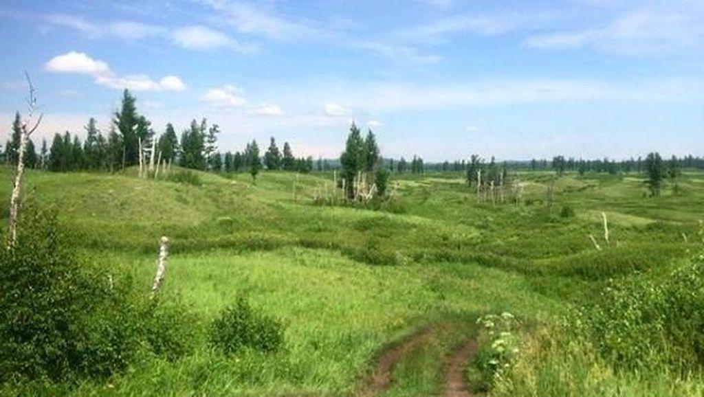 Inilah Tuva, Tempat Liburan Presiden Putin Idolanya Fadli Zon