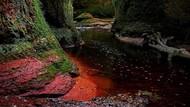Fenomena Alam: Jurang Darah