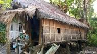 Nenek di Sulsel Hidup di Gubuk Bersama Anaknya yang Gangguan Jiwa