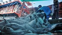 Akses Keuangan bagi Kaum Nelayan
