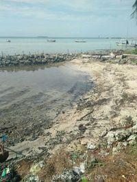 Pulau Pari Sudah Bersih Minyak, Wisatawan Tak Usah Khawatir