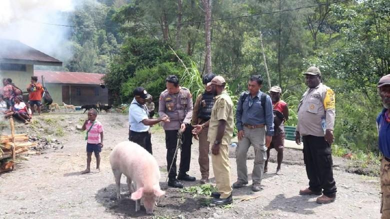 Ritual Bakar Batu di Tengah Kampung yang Diduduki KKB Papua