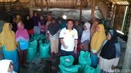 Berkunjung ke Pati, Presiden PKS Beli 1 Ton Garam Petani Lokal