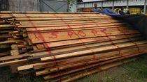 KLHK Gerebek Pabrik Kayu Ilegal di Kalimantan Barat