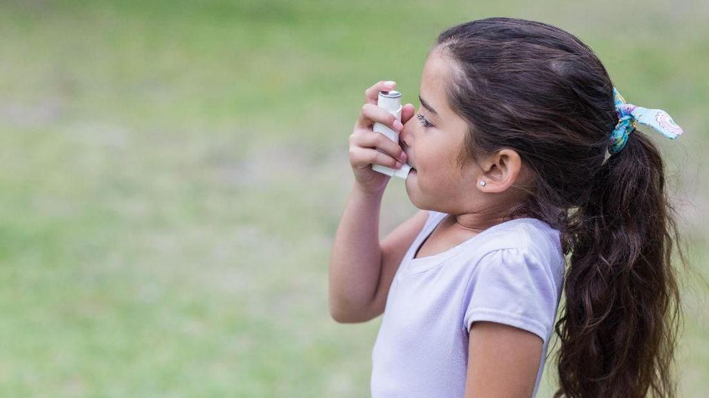 Kompor Gas Disebut Bisa Tingkatkan Risiko Anak Kena Asma, Bun