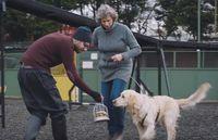 Anjing Pemandu Ini Dilatih Untuk Melacak Burger Whopper