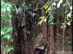 Satgas Citarum Kembali Pergoki Pabrik Buang Limbah ke Sungai