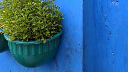 Tembok Biru
