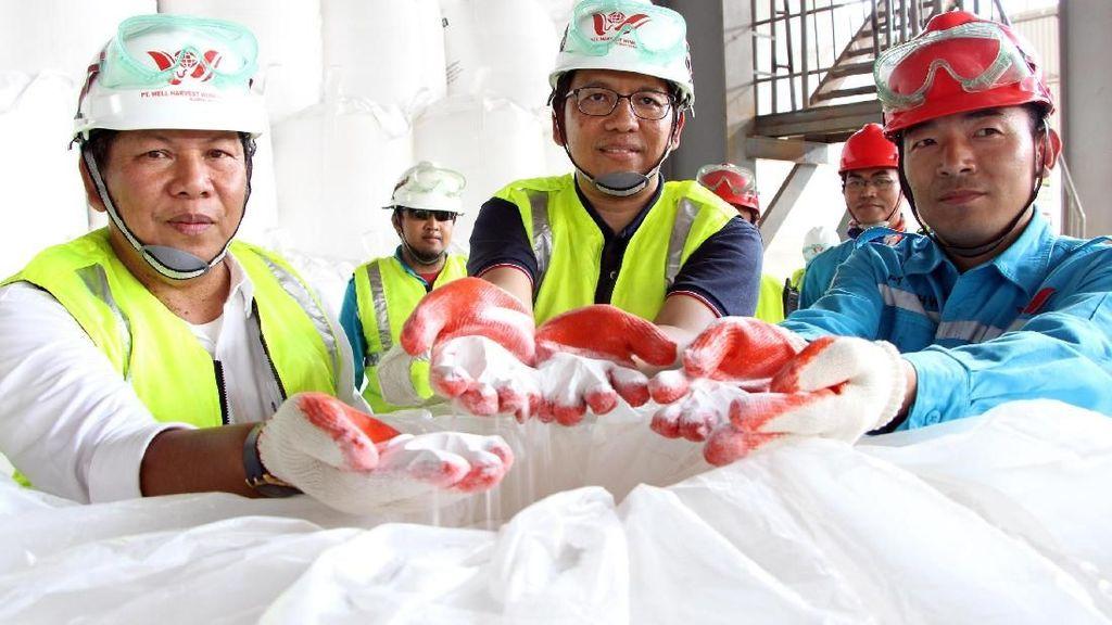 Tinjau Produksi Alumina di Ketapang