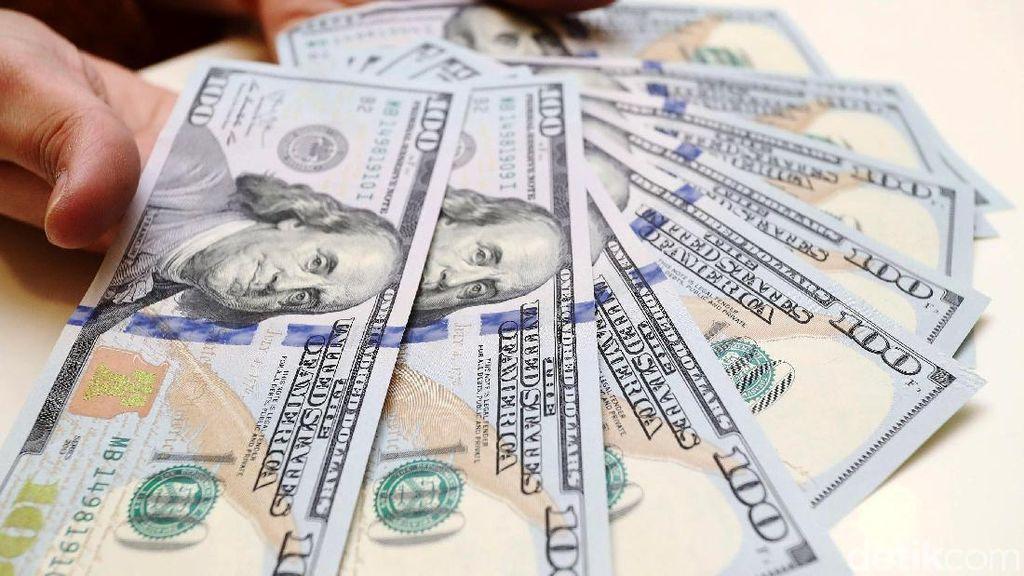 Dolar AS Bisa Rp 14.000, Pemerintah dan BI Jangan Diam Saja
