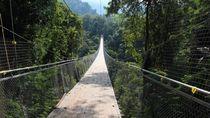Jembatan Paling Instagenik di Sukabumi, Situ Gunung